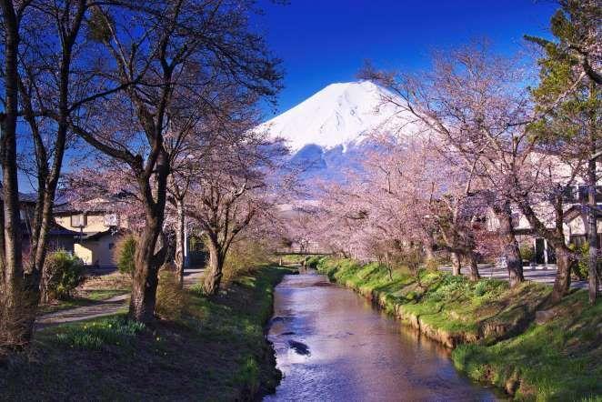 Fuji-Hakone-Izu National Park, Japan - JTB Photo/UIG via Getty Images