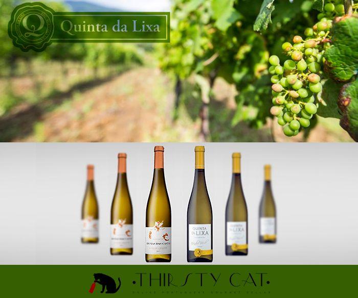 Quinta da Lixa has great green wines for you! Check now :D http://www.thirsty-cat.com/category/quinta-da-lixa