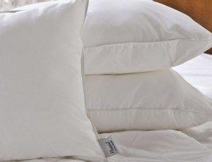 Devolver a maciez e eliminar os fungos dos seus travesseiros - Ideal Receitas