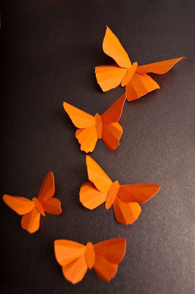 3D Wall Butterflies: Pumpkin Orange Butterfly Silhouettes for Girls Room, Nursery, and Home Decor Orange butterflies                                                                                                                                                                                 More