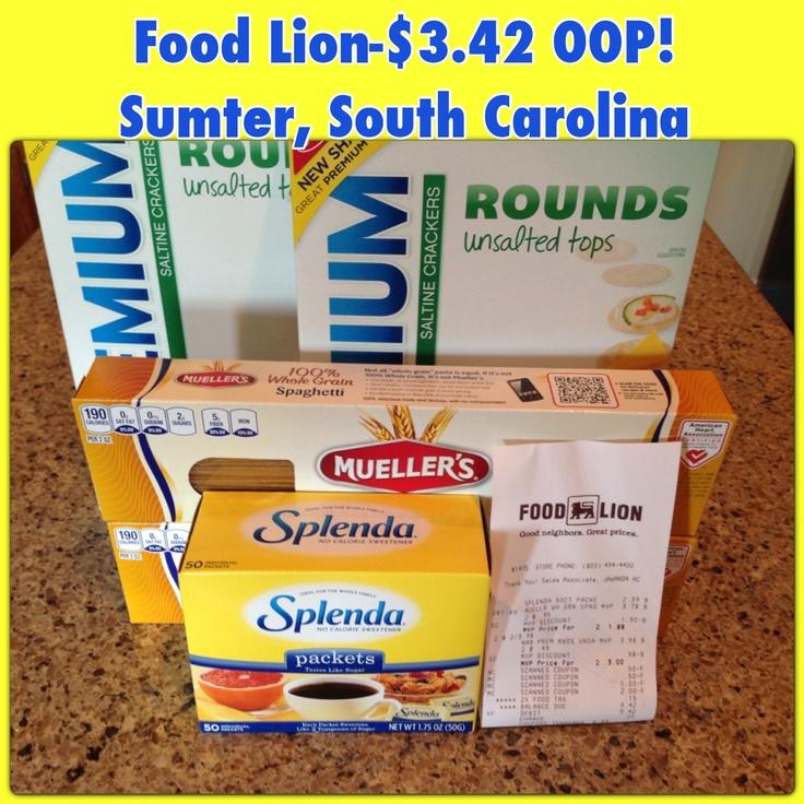 Food lion sumter south carolina south carolina food