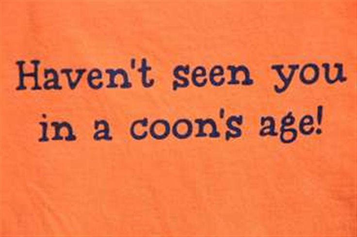 Haven't seen you in a coon's age!    Google Image Result for http://www.sweeteashirts.com/img/products/coon.jpg
