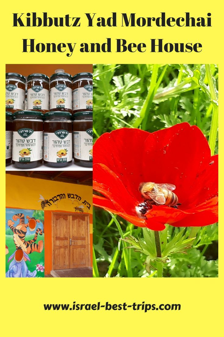 Yad Mordechai One Kibbutz Plenty Of Reasons To Visit Travel Fun Kibbutz Visiting