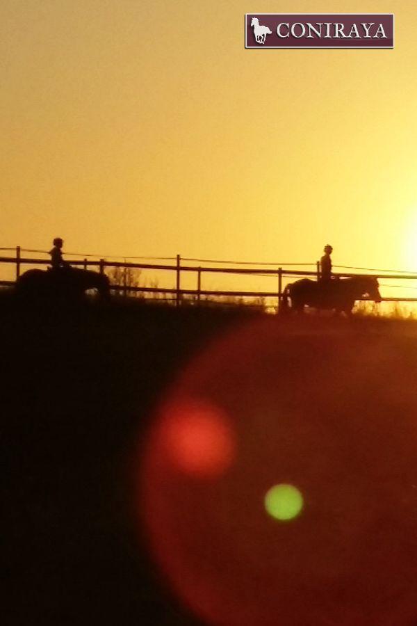 W stronę zachodzącego słońca!