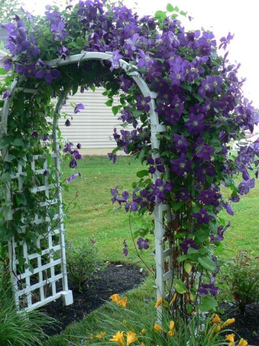 17 images about pergola pictures arbors and trellis on for Flower garden design zone 6