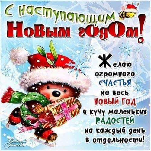 26113768_1674149112637532_8053145539124428692_n.jpg (500×500)