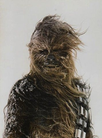 If Wookies lived on Hoth would natural selection eventually turn them white?