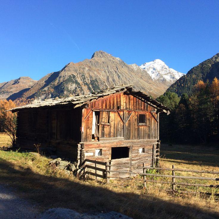 Törggelen in Südtirol - wandert auf dem Kastanienweg, kehrt in die wunderbaren Burschenschanken ein und genießt das Törggele-Menu mit Schlutzkrapfen!