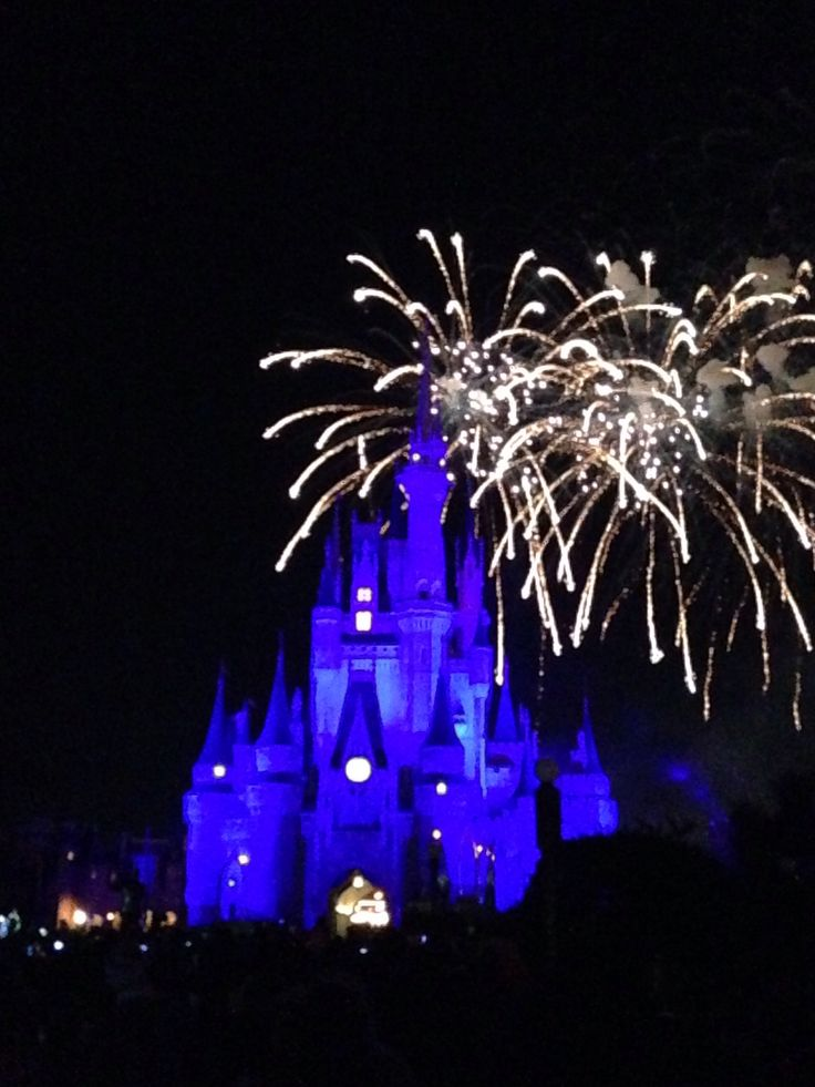 Amazing Cinderella's castle!