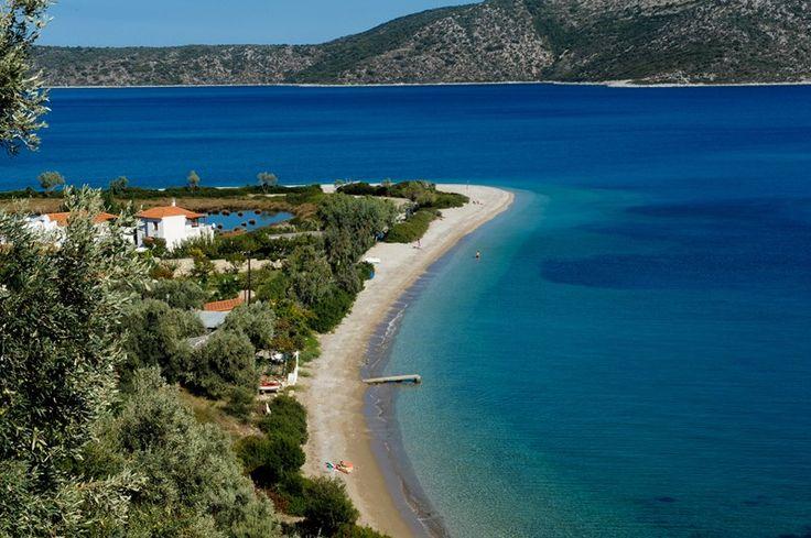 Η παραλία του Αγίου Δημητρίου, στο στενό μεταξύ της Αλοννήσου και της Περιστέρας