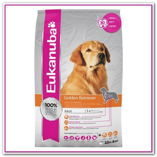 Best Dog Food For Golden Retrievers Puppy Best Dog Food Golden