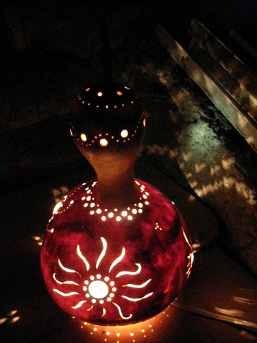 Birdhouse Gourd Lamp:  Just another brilliant idea of what to do when all these little buggers are ready! :) This one looks pretty exciting though!  EEK!