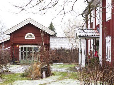 STORA DALAGÅRDEN FICK EN LANTLIG OCH FIN JULSTIL: Till höger har Åsa sin ateljé där hon dekorationsmålar. Granen på verandan har fått sin tomtemössa, uterummet är pyntat med rött och grönt. Överallt på den gamla bergsmansgården är det stämningsfull advent. Den stora röda byggnaden i Smedjebacken härstammar från 1700-talet. Bergsmännen bröt malm vid sidan av jordbruket och hade ofta stora fina, gårdar | Leva & Bo