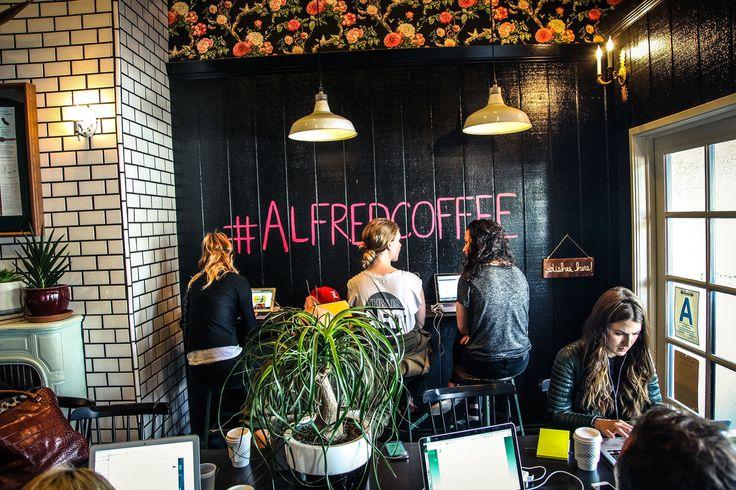 Media   Alfred Coffee & Kitchen