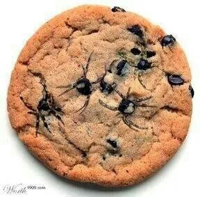 Spider cookies... Use a toothpick to drag out legs from melted chocolate chips...perfect for the class (and coworkers!)