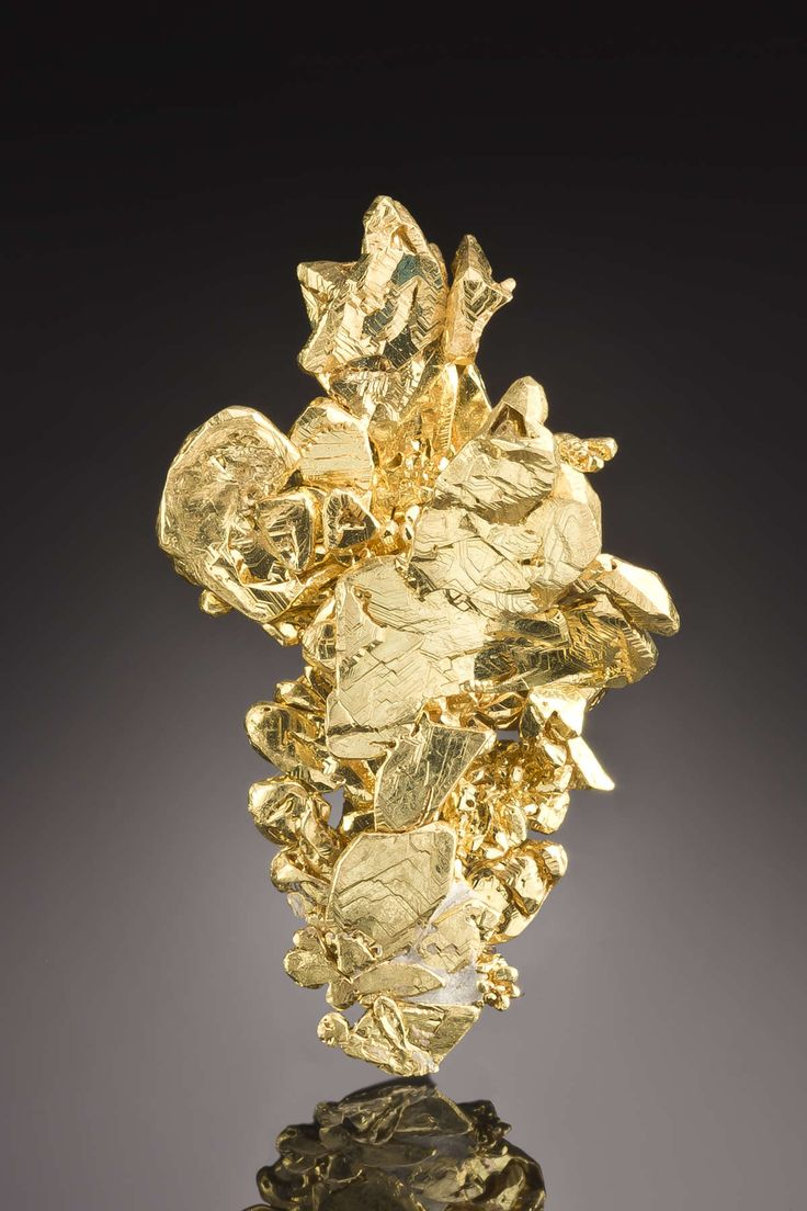 Gold from Eagles Nest Mine, Forest Hill, Placer Co., California, USA