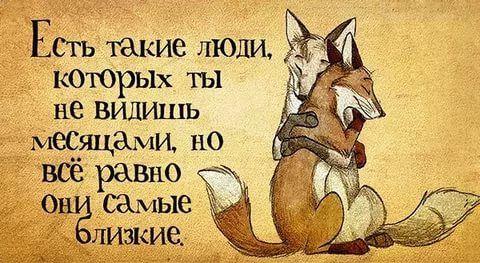 стихи с юмором о жизни: 13 тыс изображений найдено в Яндекс.Картинках