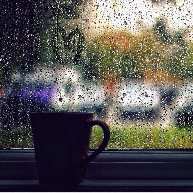 картинки дождливое утро на даче каждого станка нужна