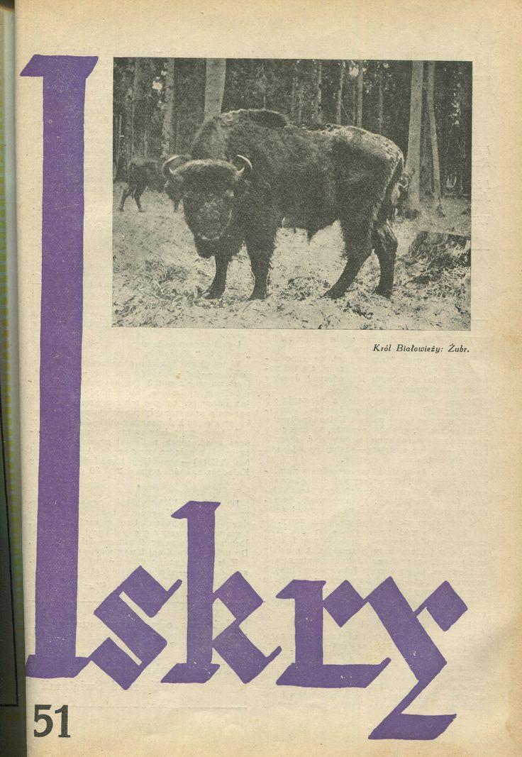 "Iskry No. 51, 10.12.1932, Y. X Photograph on the cover: ""Król Białowieży: Żubr"""