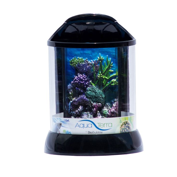 "BioBubble 3D Background for AquaTerra 1 Gallon Black 7.5"" x 7.5"" x 10"""