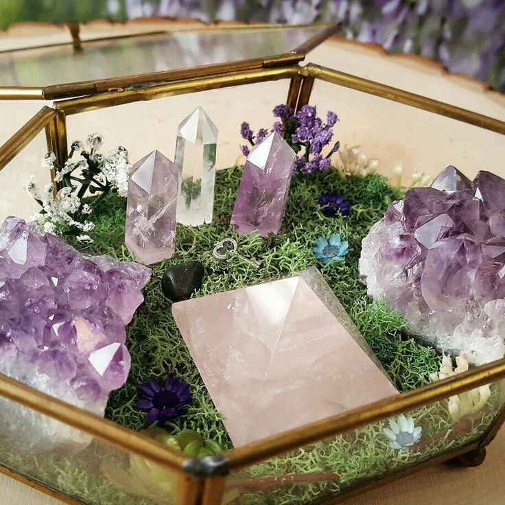 New crystals gardens were just added to the shop! Stop by