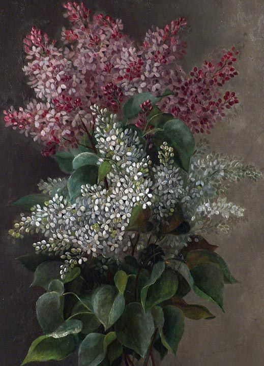Raoul Maucherat De Longpre Lilacs and Leaves Closeup