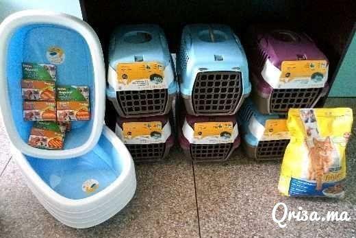 Cages neuf italiennes pour chat est chiens