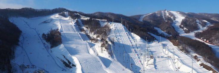 09 Feb - 25 Feb   https://www.olympic.org/pyeongchang-2018