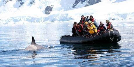 Antarctica Classic Air-Cruise 7 Days