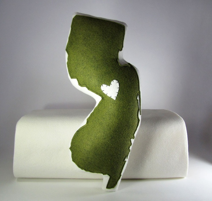 Love this state pillow!
