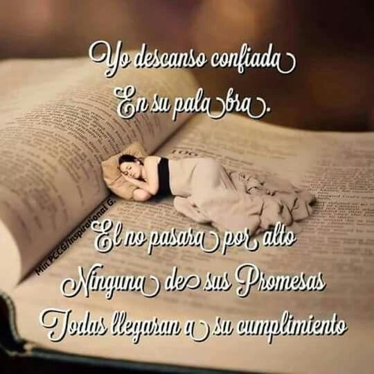 2 Corintios 1:20 Porque todas las promesas de Dios son en él Sí, y en él Amén, por medio de nosotros, para la gloria de Dios. 2 Corintios 7:1 Así que, amados, puesto que tenemos tales promesas, limpiémonos de toda contaminación de carne y de espíritu, perfeccionando la santidad en el temor de Dios.♔