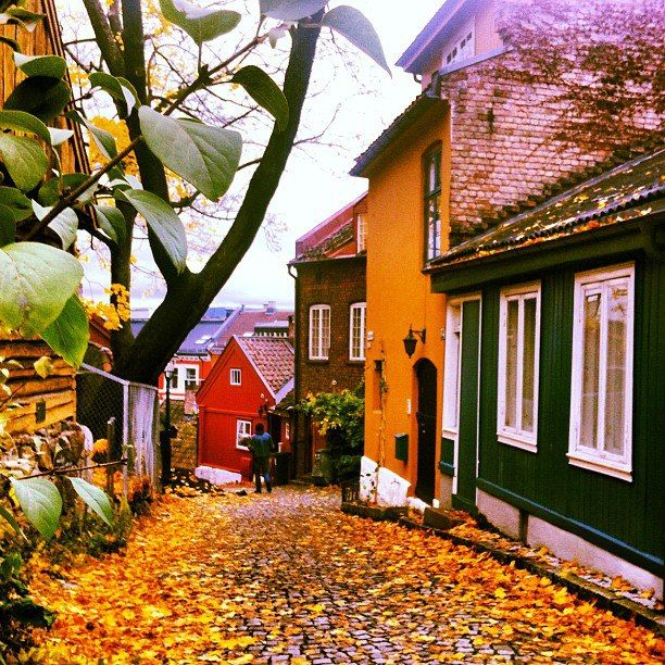 Damstredet - Oslo, Norway
