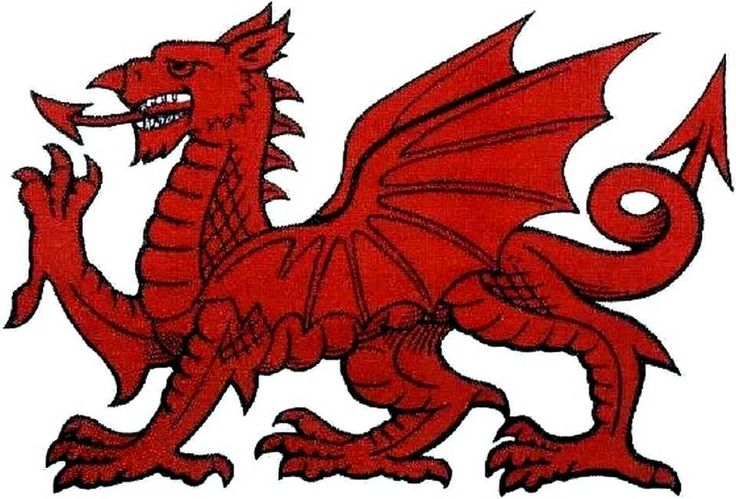 Welsh dragon 2