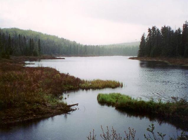 Canada Jagdreisen
