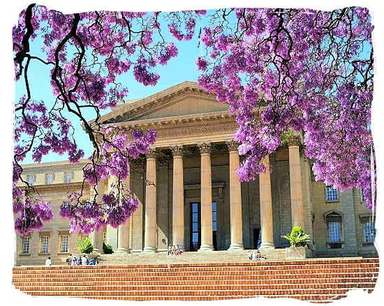 The University of the Witwatersrand (Johannesburg)