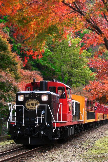 京都嵯峨野トロッコ列車