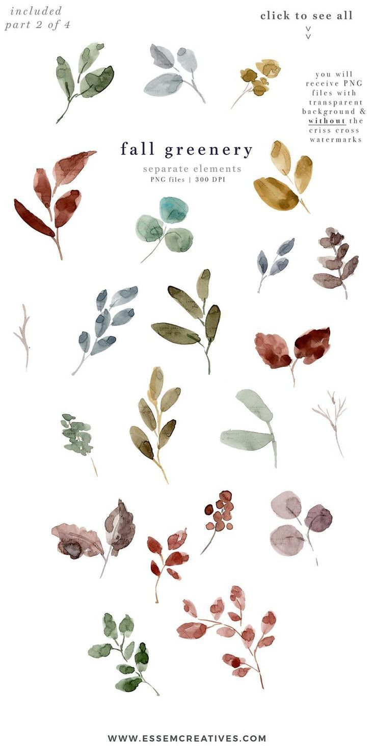 Watercolor Fall Leaves Clipart Fall Clipart Autumn Leaf Etsy Watercolor Border Watercolor Flower Wreath Fall Watercolor