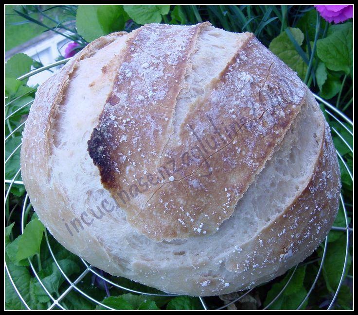 blog di ricette e cucina senza glutine per celiaci realizzate da una mamma. Amor vincit celiachia e' il motto della mia famiglia