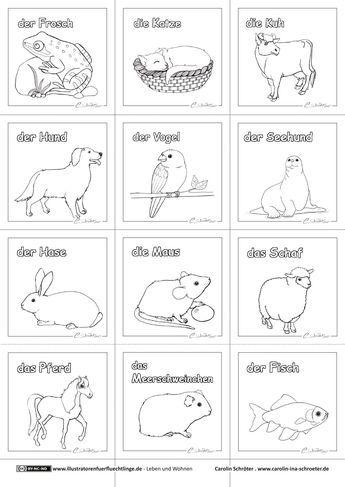 Download als PDF:Leben und Wohnen – Haustiere – Schroeter