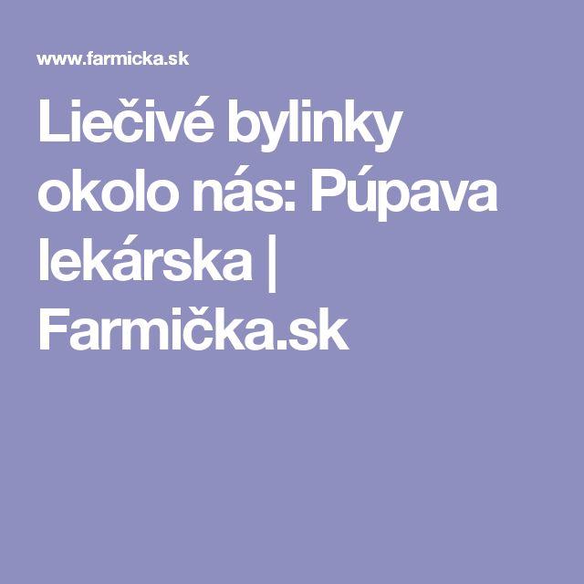 Liečivé bylinky okolo nás: Púpava lekárska | Farmička.sk