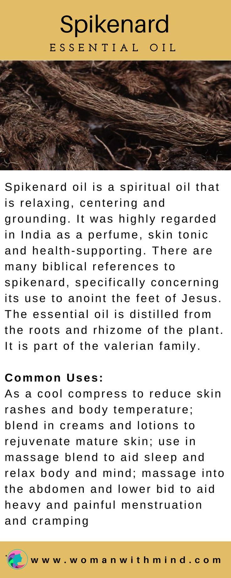 Spikenard Essential Oil Guide & Application #essentialoils