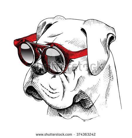 Bulldog French Vetores e Vetores clipart Stock   Shutterstock