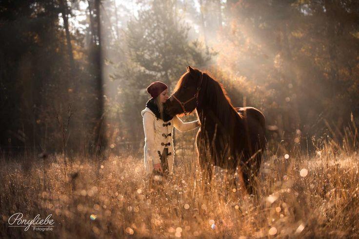 Autumn Magic – Ilona und ihr junger Islandwallach Solón bei einem wunderschönen Herbstsonnenaufgang in Deutschland.