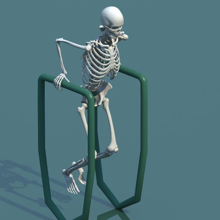 Anatomy Of A Combine : Ideas about human skeleton anatomy on pinterest