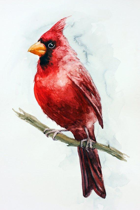 Red Cardinal Painting Original Watercolor Bird Aquarelle Decor