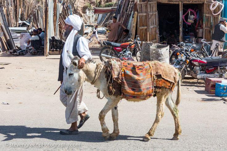 Man with White Donkey