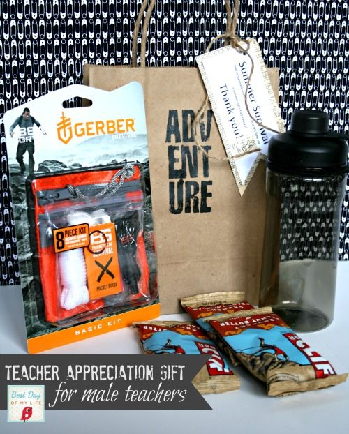 164 best gift ideas teachers images on pinterest gift ideas summer survival kit male teacher appreciation gift negle Images