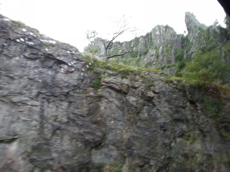 Jediné foto z Cheddar Gorge ... foceno z autobusu za jízdu ... bylo tak nepříznivé počasí, že jsme ani nevystopili z autobusu. Škoda, že plánovanou procházku se nedalo zvládnout. Tak snad někdy jindy v budoucnu...