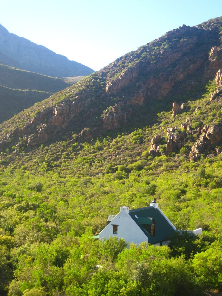 A Perfect Hideaway away from the city. Perfect for the whole family..  http://www.perfecthideaways.co.za/citrusdal/river-farm #farms #capetown #accommodation