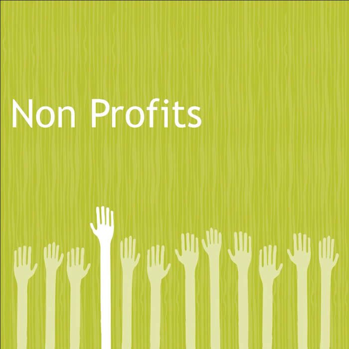 46 best Non profit images on Pinterest Organizations, Bag and - sample non profit budget